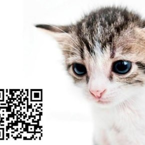 Now that everyone hates QR codes it's time to start loving them